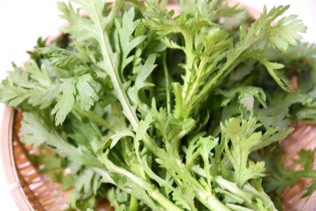 【妄想レシピ】菊菜(春菊)をつかった料理